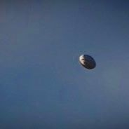 Rugby Ball in the Air Avatar for PHR