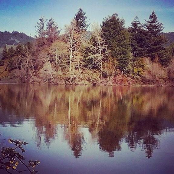Fall at Spring Lake, Santa Rosa, California