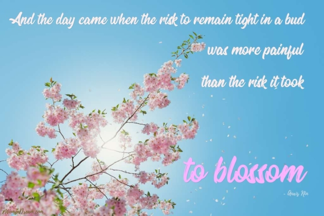 Anais Nin Quote And the Day Came When the Risk to Remain Tight for 8WomenDream Post