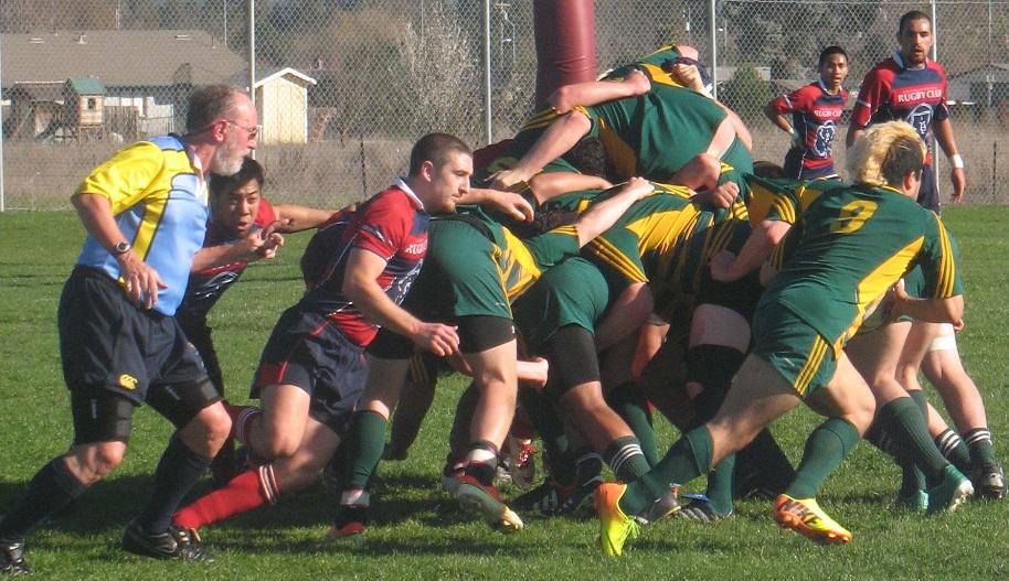 SRJC Rugby Social Media Image